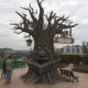 Talking-Tree-03
